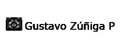 Gustavo Zúñiga P.